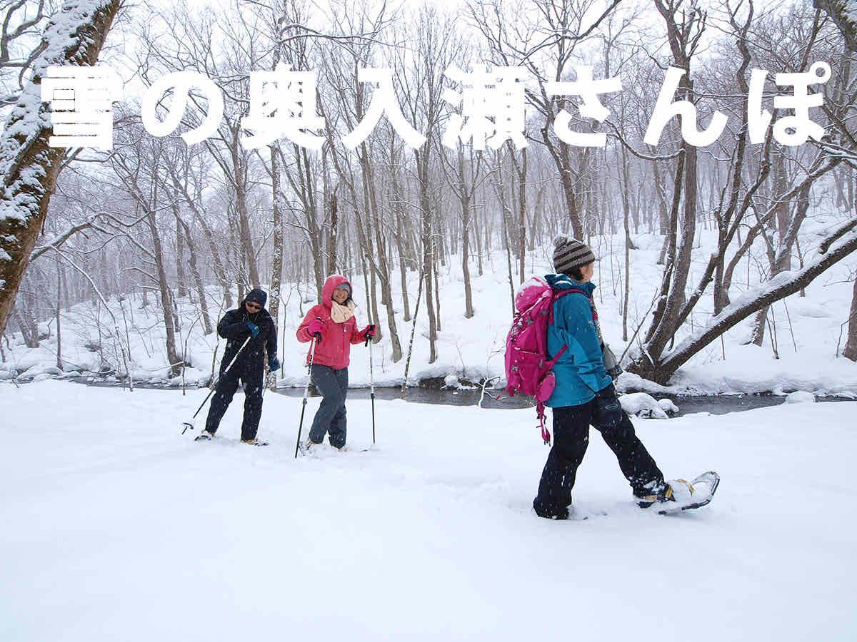 雪の奥入瀬さんぽ